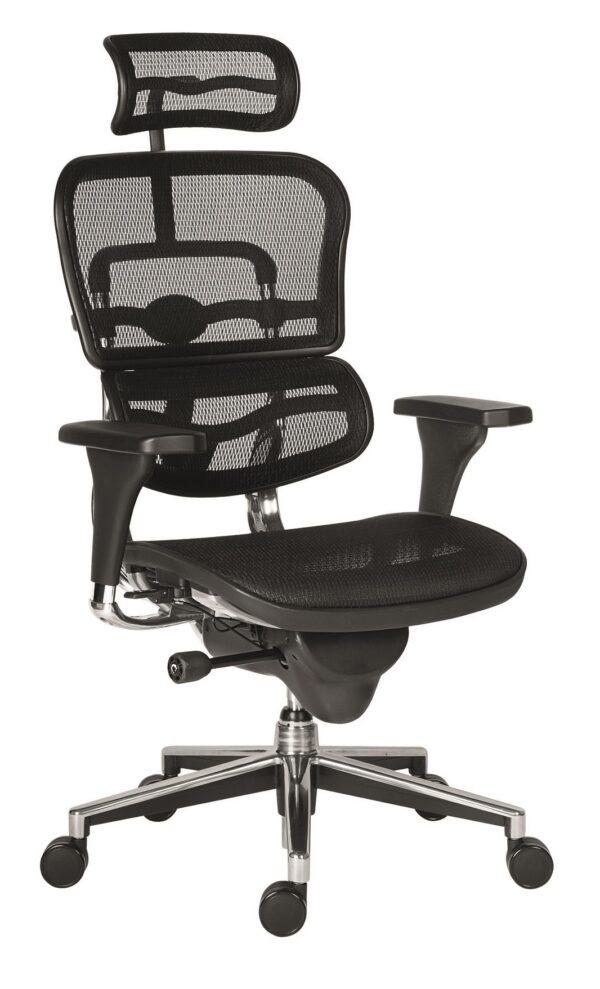 ANTARES židle Ergohuman NET